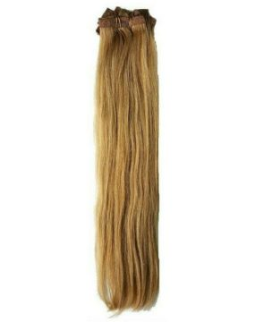 Dirty Blonde Clip-In Extensions