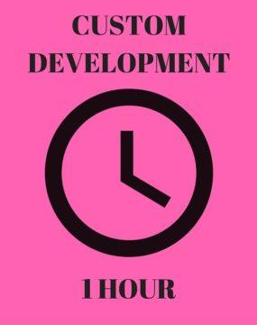 1 Hour Development