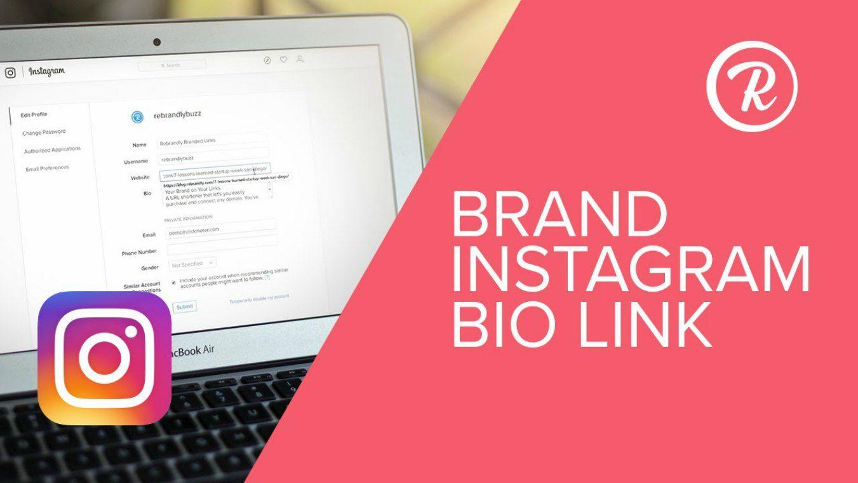 link in bio ig